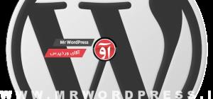 wordpress-logo-grey-768x360-590x276