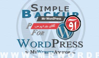 Read more about the article دانلود افزونه فارسی Simple Backup