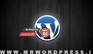 wordpress-logo-shine1111